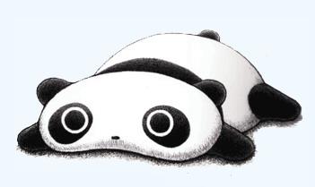Bird face panda free images clipart clip art image
