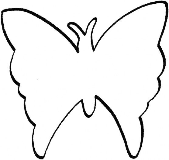 Butterfly outline butterflies on