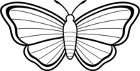 Butterfly outline clipart free images 4