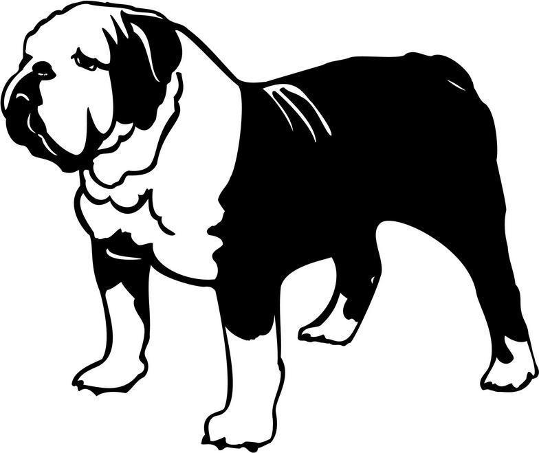Free bulldog clipart pictures 4