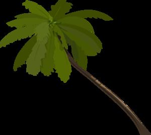Palm tree clip art at vector