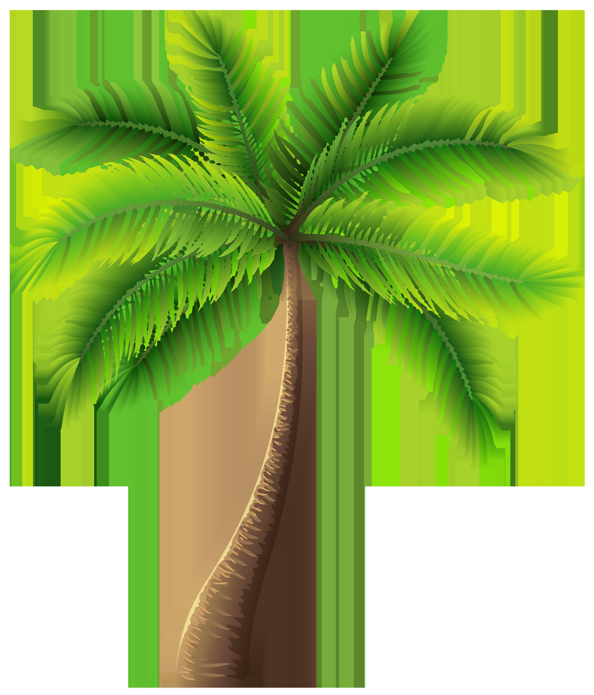 Palm tree clip art web clipart