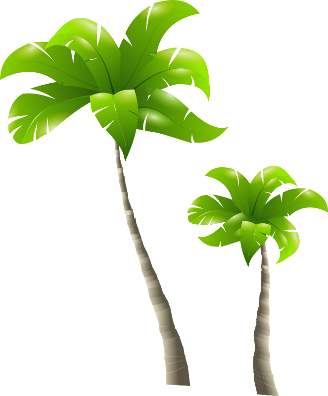 Palm tree free to use clip art