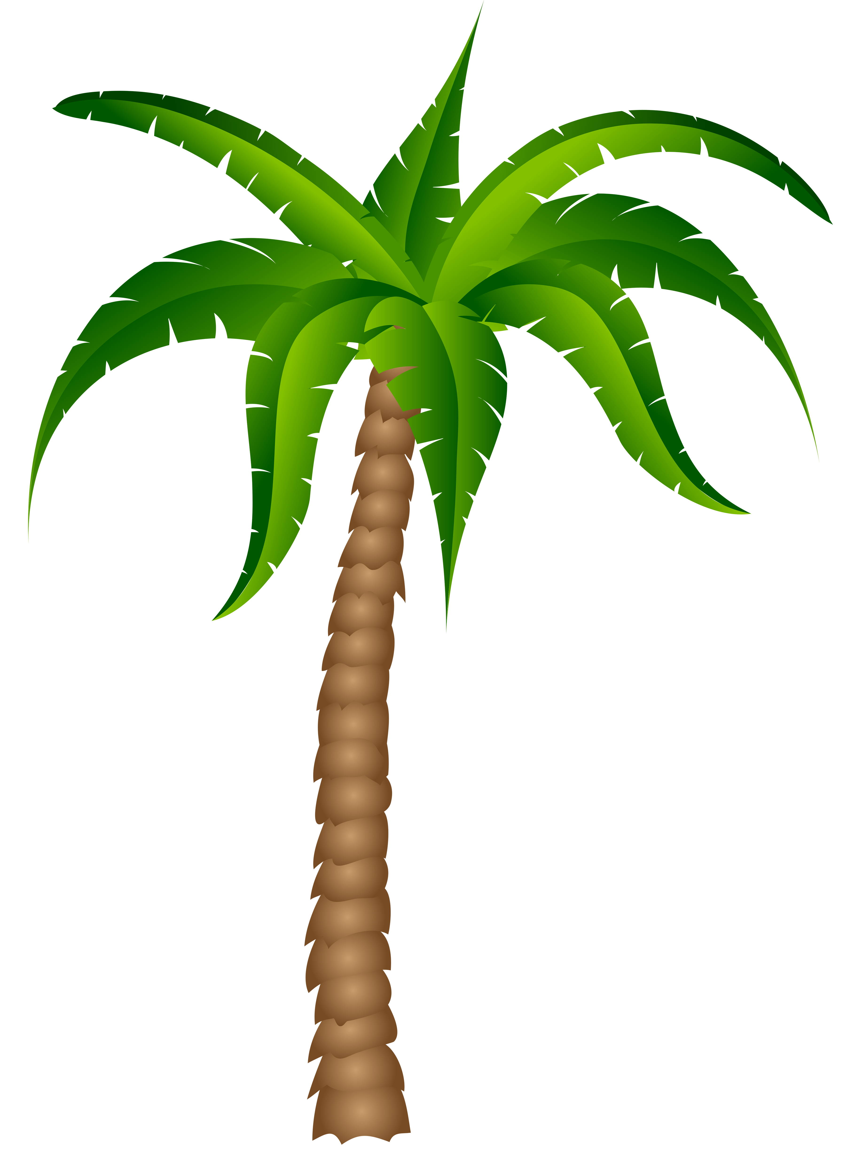 Palm tree palm clipart wikiclipart