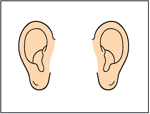 Animated ear clipart