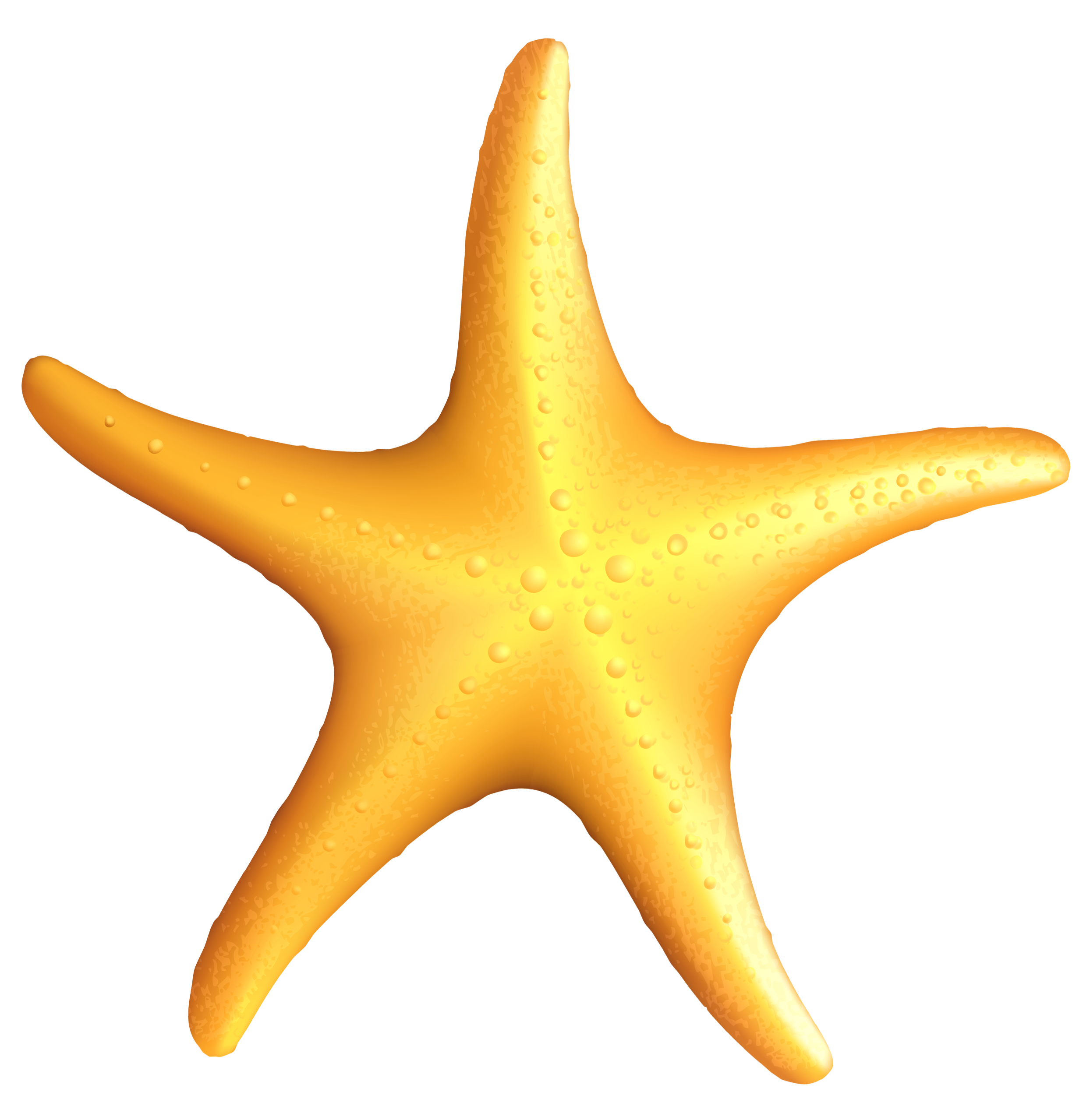Clipart images of starfish
