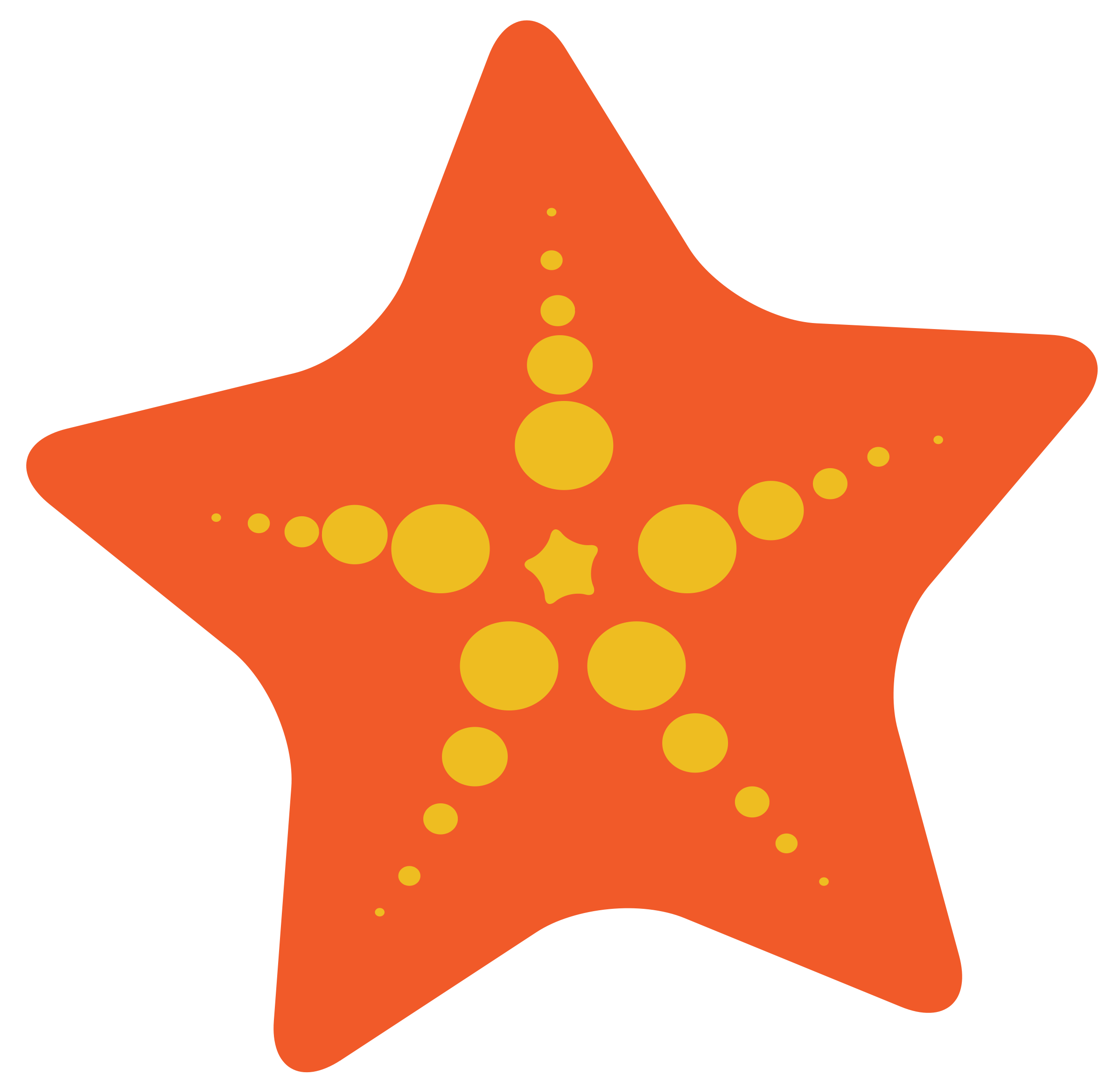 Cute starfish clipart free images 3