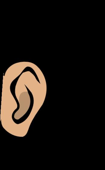 Ear clipart 2