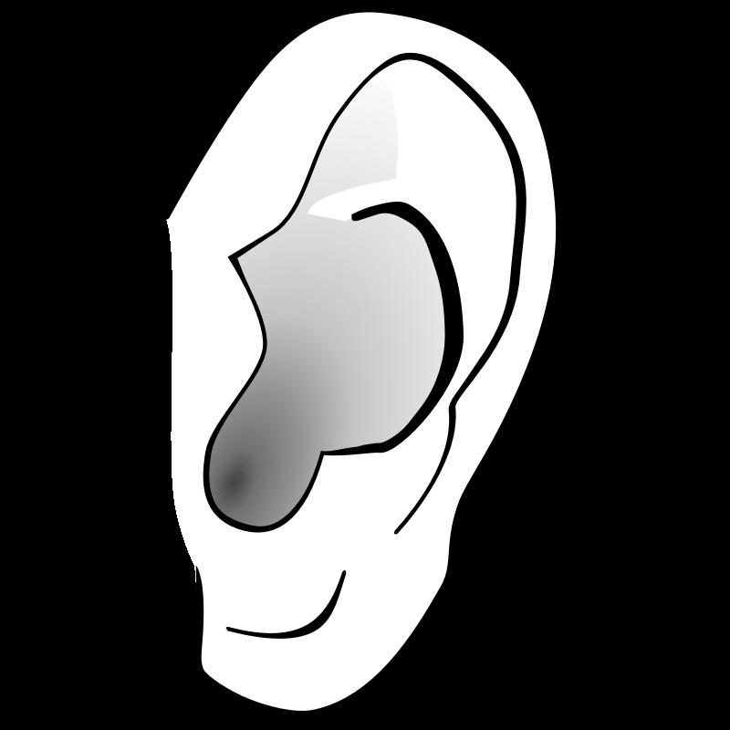 Ear clipart 5