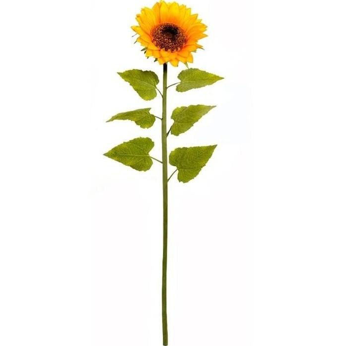 Long Stem Sunflower Clipart Gclipart