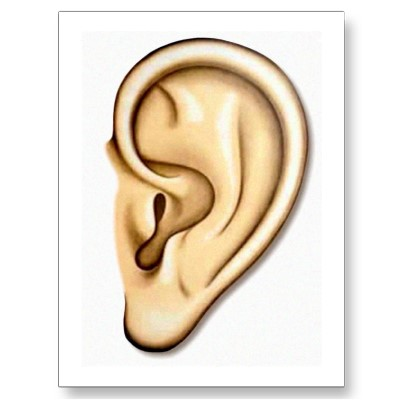 Make meme with right ear clipart listening ears 2