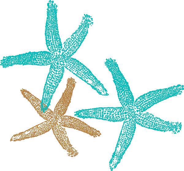 Starfish clipart image 6