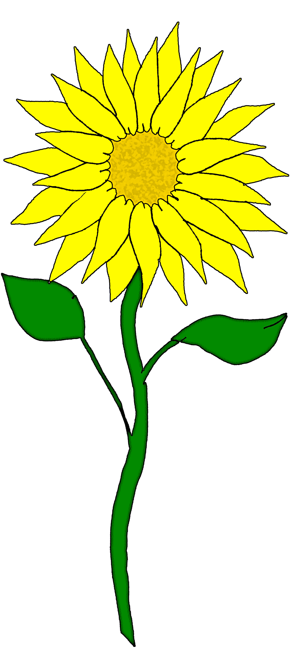 Sunflower border clipart free images