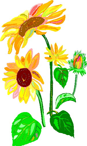 Sunflower clip art free printable clipart 2 12