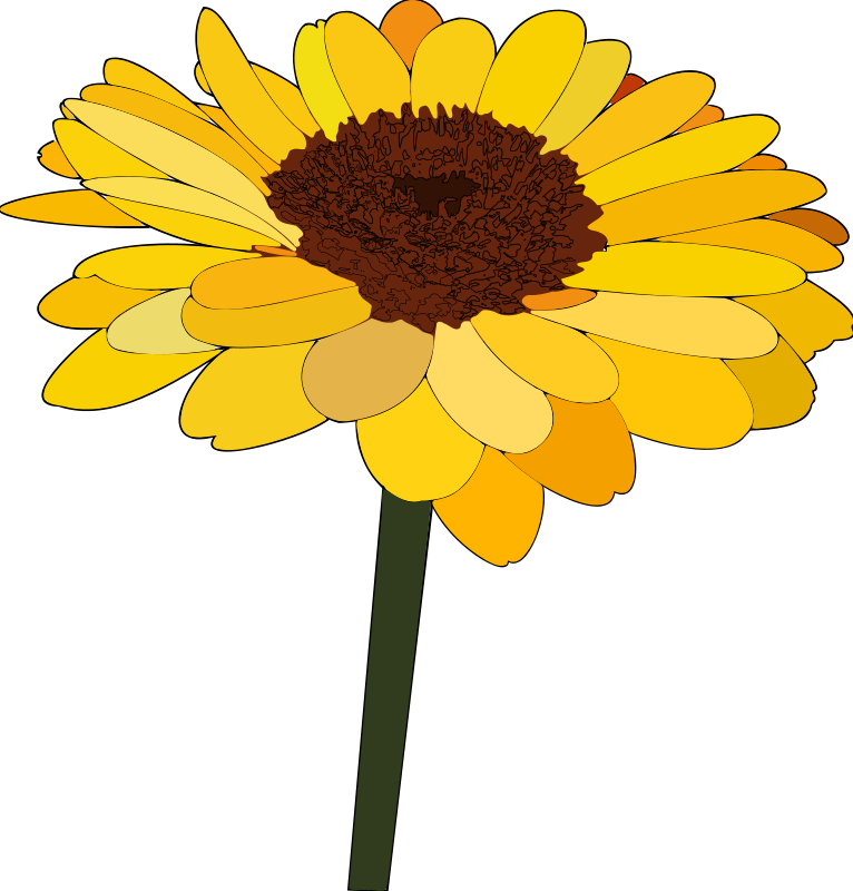 Free Sunflower PNG Images  Pngtree