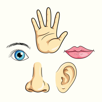 Clipart google nose eyes
