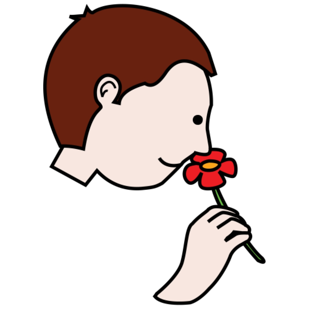 Funny nose clipart