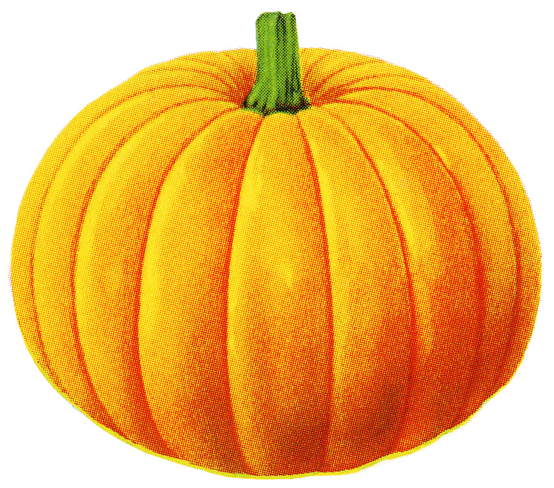 Pumpkin free clipart