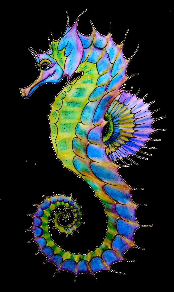 Seahorse clipart 3