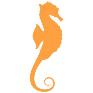 Seahorse free sea horse clip art vector for download 3