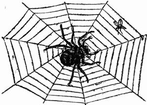 Clip Art Web Clipart spider web clip art at vector 3 gclipart com download 2