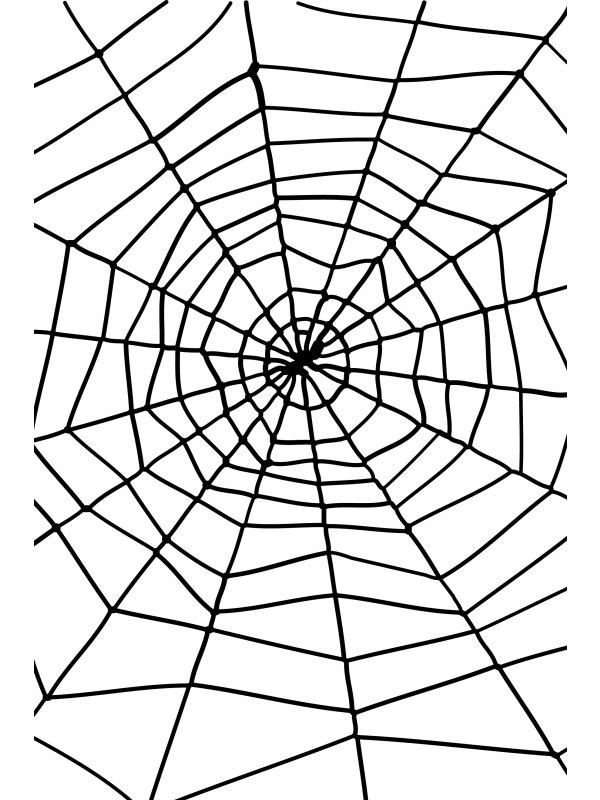 Spider web spiders clip art clipart 6