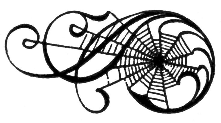 Spider web spiders clip art clipart