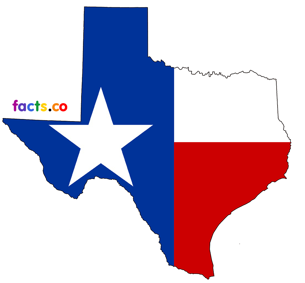 Texas outline texas state map with cities download blank outline map of 2