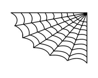 Vector spider web clipart