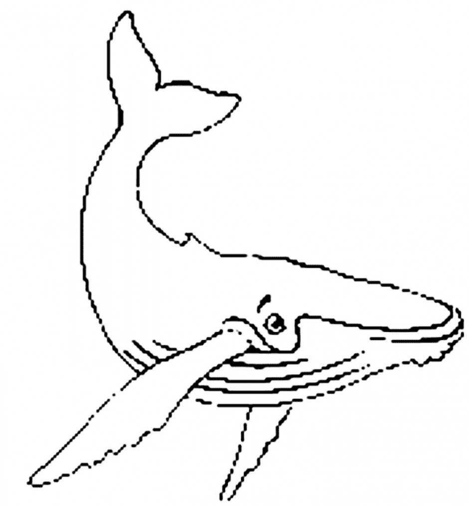 Whale  black and white black and white cute whale clipart