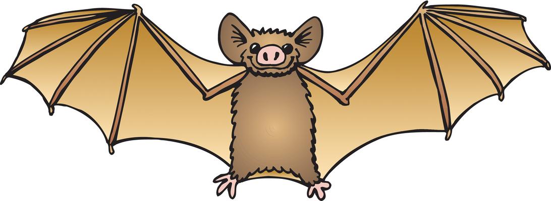 Bat clipart free images 4