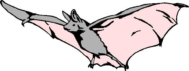 Bats clip art 5