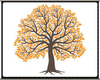 Big family tree clipart