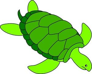 Cartoon sea turtle clipart