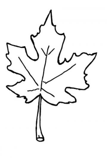 Fall leaves fall leaf outline clip art 2