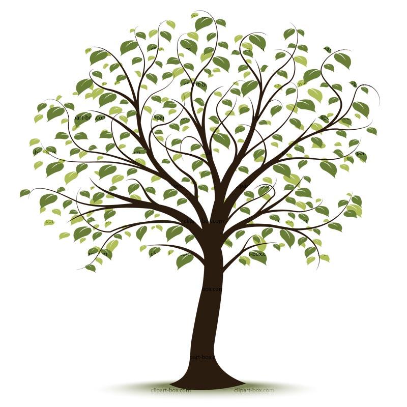 Family tree clipart free