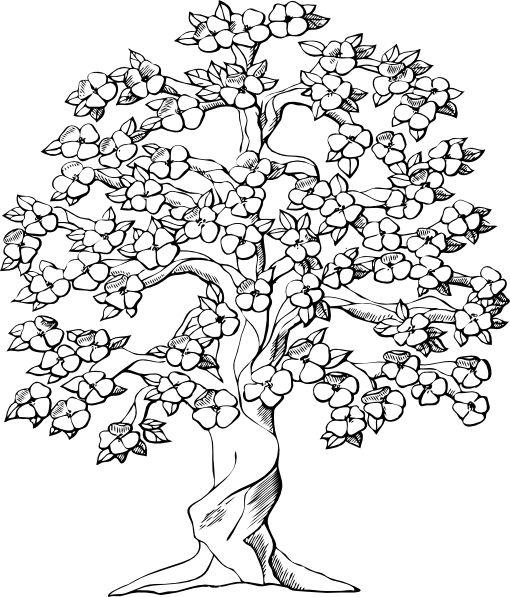 Family tree tree clipart large family clip art vector