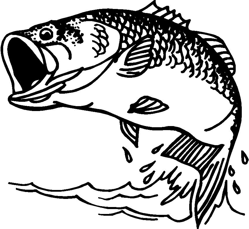 Fish  black and white bass fish clipart black and white clipartfox