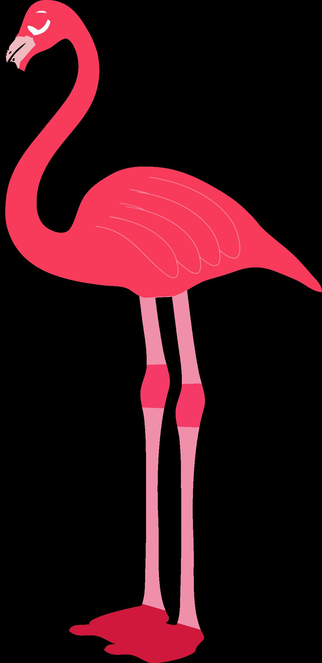 Flamingo clip art free 2