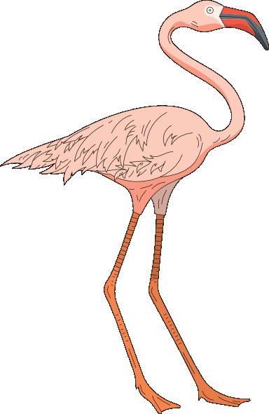 Flamingo clip art free 3
