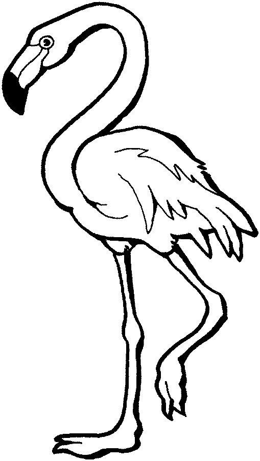 Flamingo clip art free clipart images 9