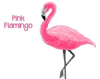 Flamingo clipart 5