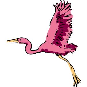 Flamingo clipart 6