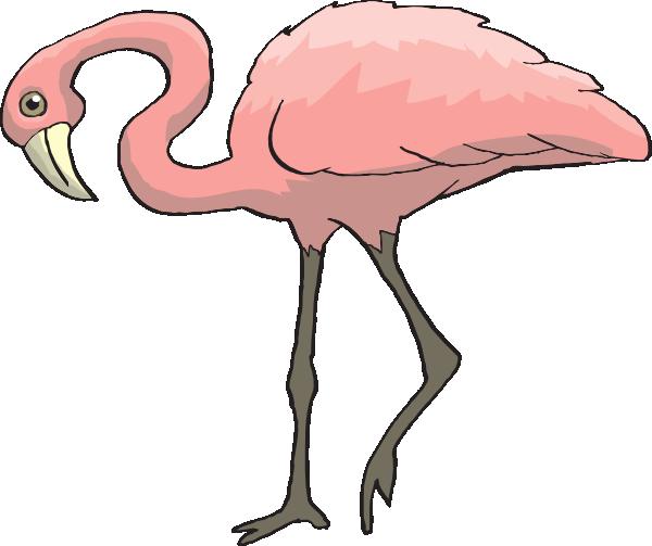 Flamingo free to use clip art 2