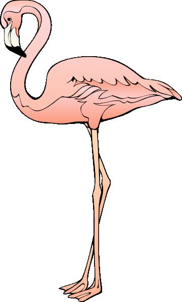 Flamingo free to use clipart 5