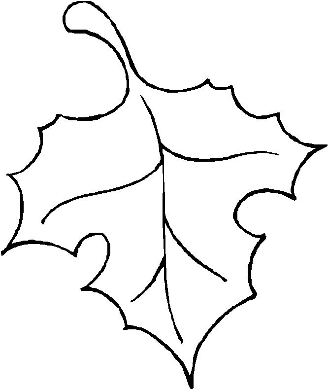 Free clipart leaf outline