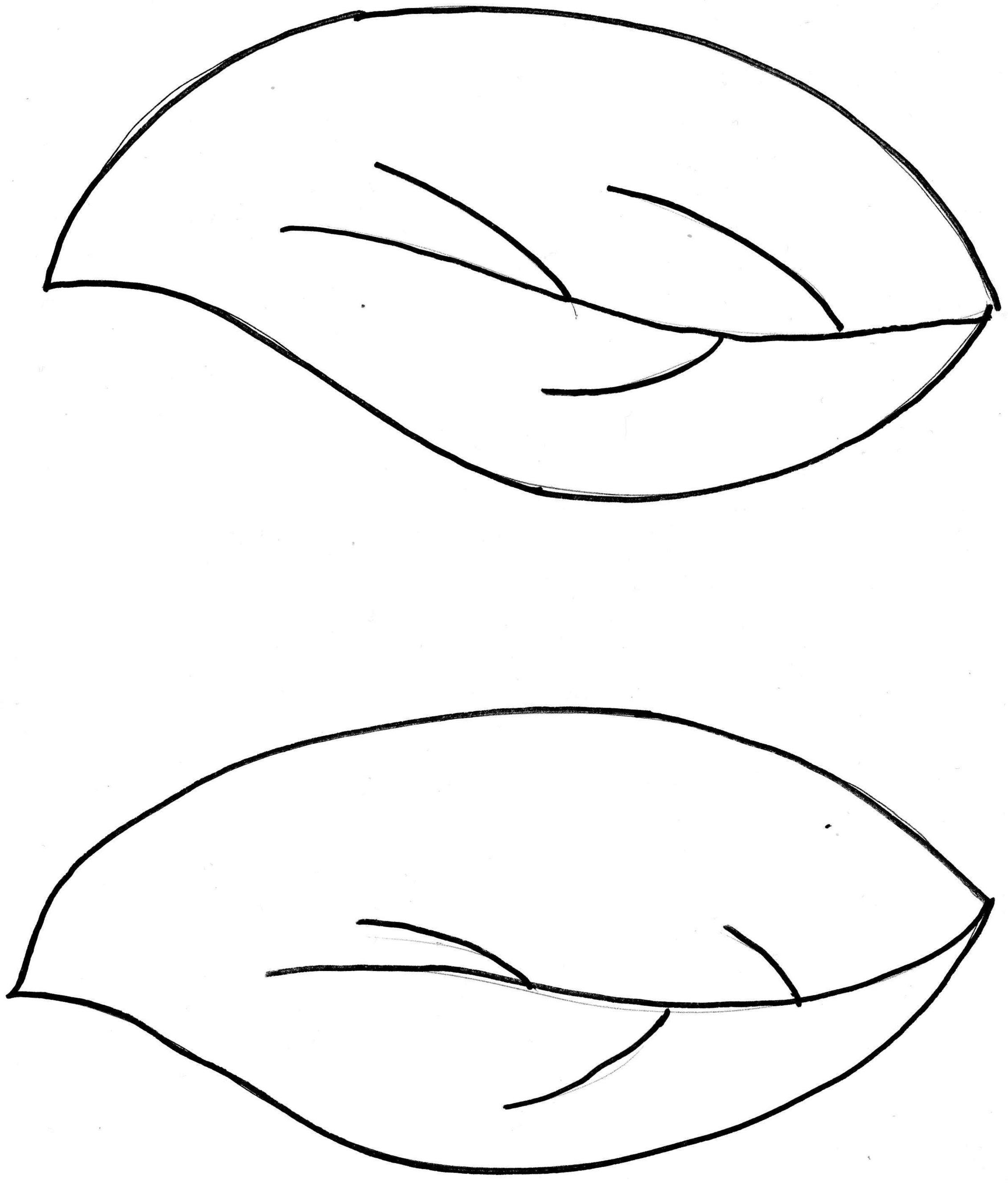 Leaf outline 3 clip art clipart
