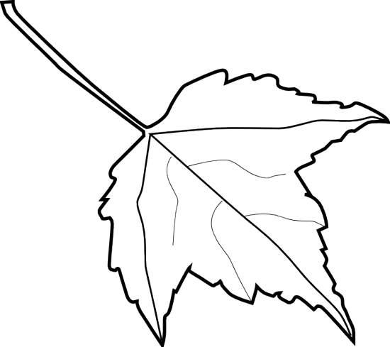 Leaf outline clipart clipart 2