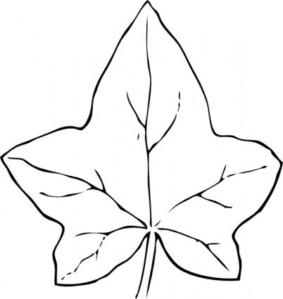 Leaf outline fall leaves outline clipart 8