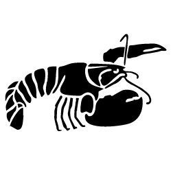 Lobster clipart 5 image